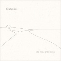 Bing Satellites - Little house by the ocean