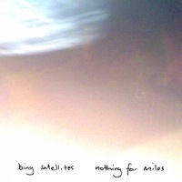 Bing Satellites - Nothing For Miles